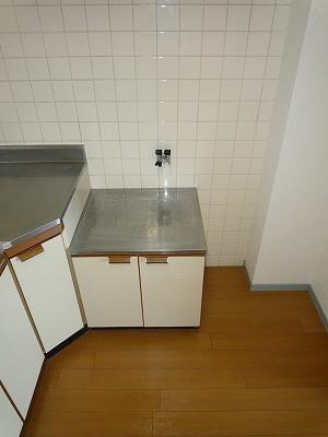 サンシャインウネベ 302号室のキッチン