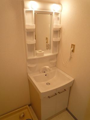 サンシャインウネベ 302号室の洗面所