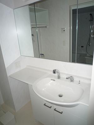 ロイヤル キャッスル 206号室の洗面所