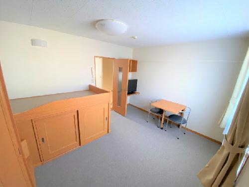 レオパレスカーサ ビアンカ 201号室のリビング