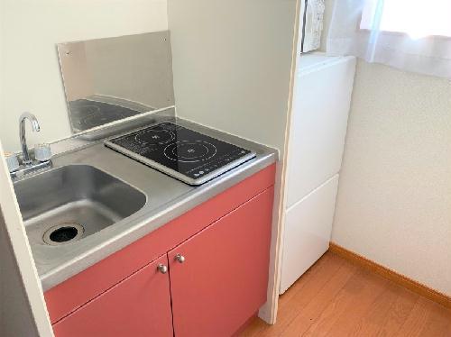 レオパレスカーサ ビアンカ 201号室の風呂