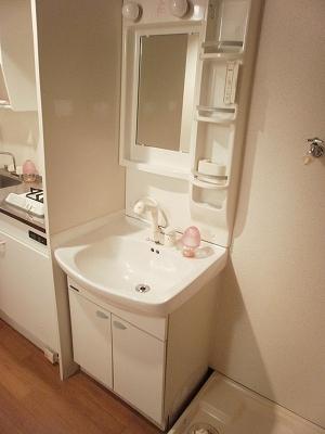エスポワールTAKEDA 206号室の洗面所