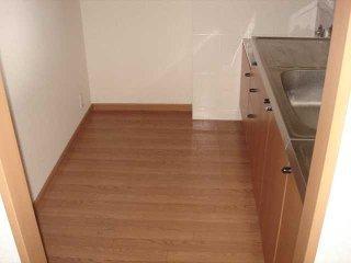 オアシスⅡ 206号室の洗面所