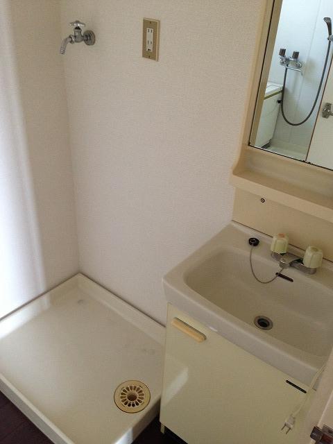 マンションベルツリー 306号室の洗面所
