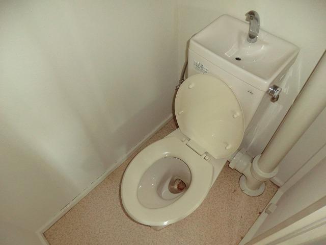 ハピネス緑 303号室のトイレ