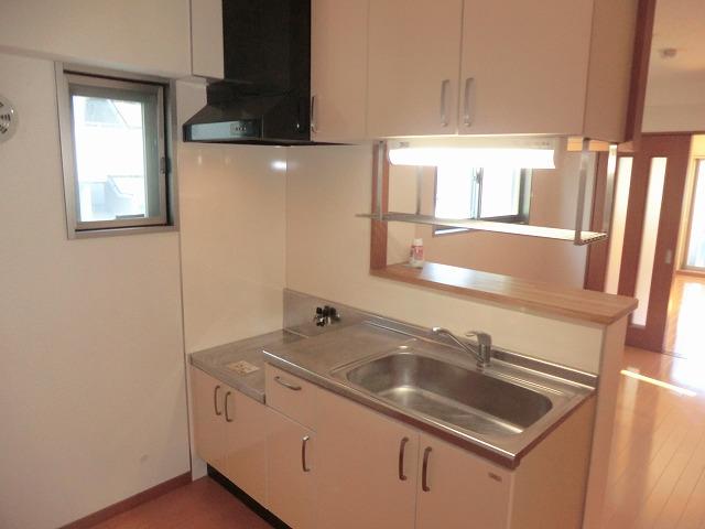 プレイン安城 204号室のキッチン
