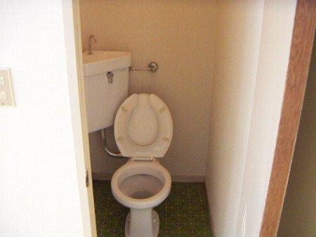パナハイツ谷 201号室のトイレ