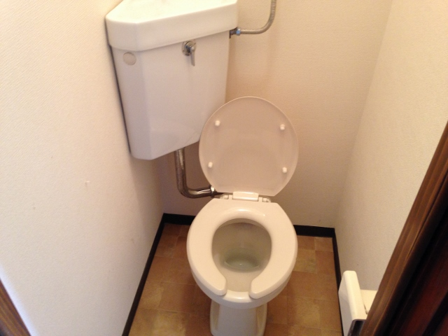 パレスホワイト 202号室のトイレ