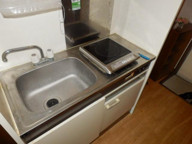 ヨーロピアン255洋光台 203号室のキッチン