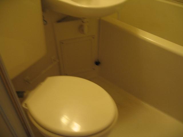 プロバンス 307号室のトイレ