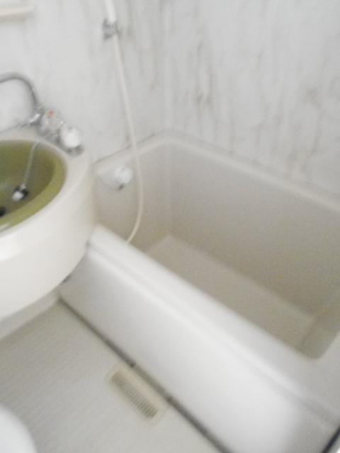 シティーハイムエルベ 2-B号室の風呂