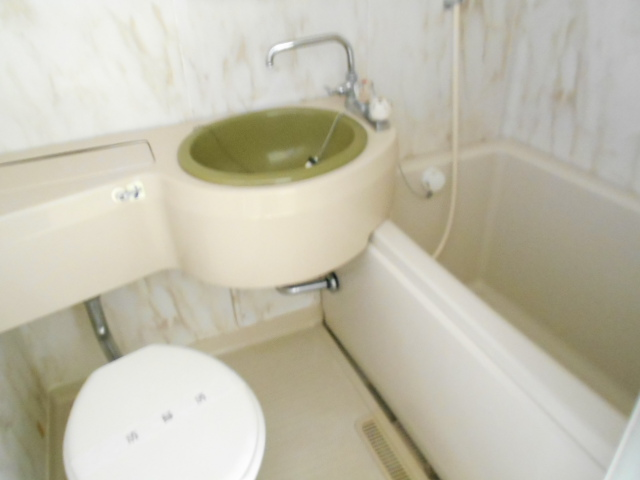シティーハイムエルベ 2-B号室の洗面所