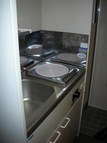 リバーサイドフラット G号室のキッチン