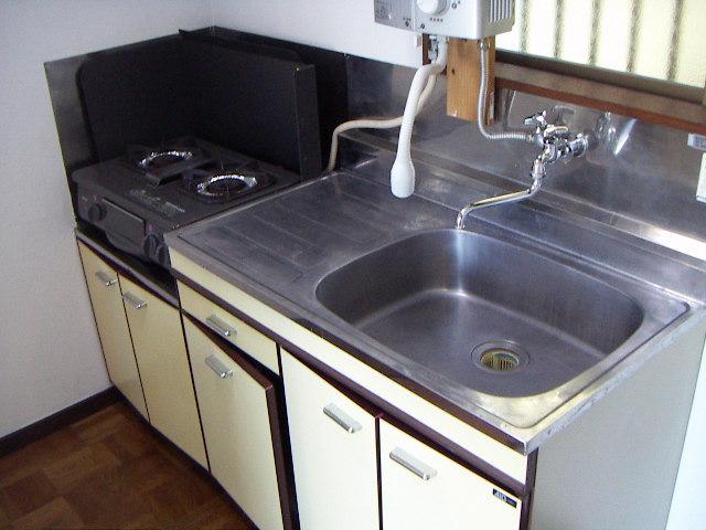ヤングハウス立山 103号室のキッチン