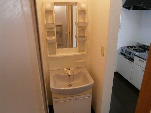 ファーストステージ 201号室の洗面所