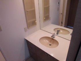 本牧パーク・ホームズ 203号室の洗面所