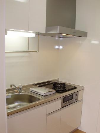 ホワイトレジデンス・サチ 102号室のキッチン