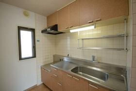 ドミールいぶき野 303号室のキッチン