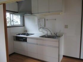 和泉中央南ハイツ(旧 和泉町団地) 656号室のキッチン