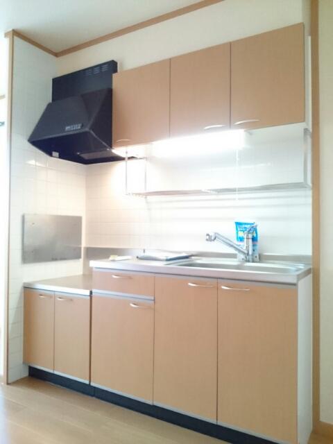 Mステージ 02010号室のキッチン