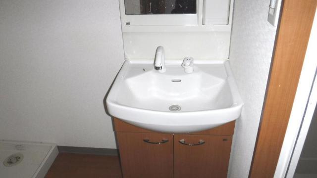 ビューテラス 203号室の洗面所