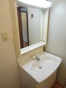 リバーサイドハイツ座間Ⅴ 202号室の洗面所