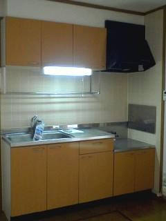 コスモス LF 02010号室のキッチン
