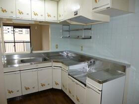 グランディ・シンヤ 304号室のキッチン
