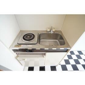 サザンシティ相模Ⅰ 202号室の玄関