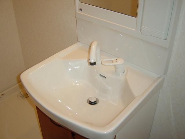 フォンテーヌ 101号室の洗面所