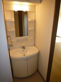 サニーヒル 2-102号室の洗面所