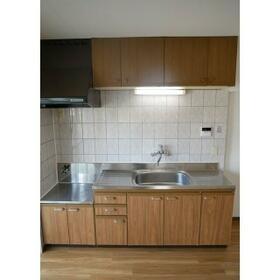 名瀬マンション 0203号室の洗面所