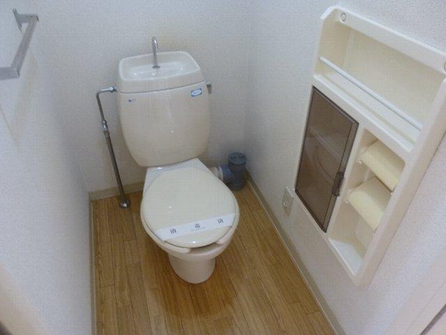 フレグランス東林間 207号室のトイレ