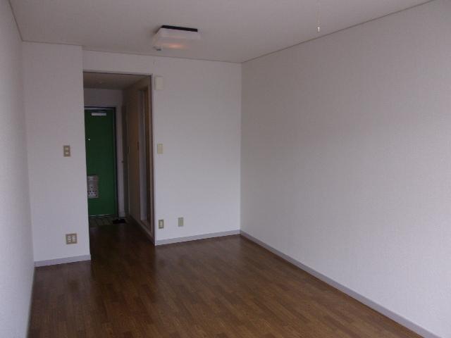 ハイネス相模大野 202号室のリビング