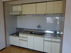 ハイムスワン 303号室のキッチン