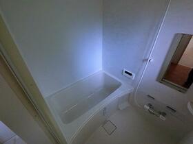 レンターハウス 2号室の風呂