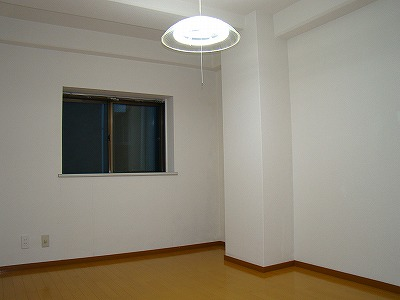 インターフェイス壱番館 201号室の居室