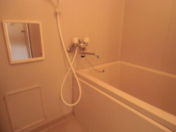 リオ・グランデ 201号室の風呂