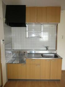 ウインディアM5号棟 21号室のキッチン