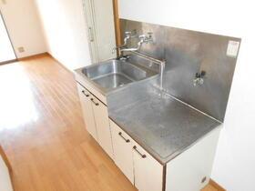 サンアベニュー金子 203号室のキッチン