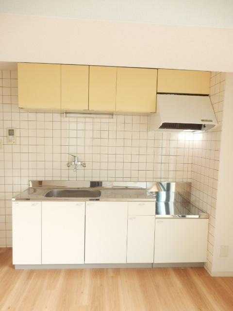 CITY OASIS IMAMURA 201号室のキッチン