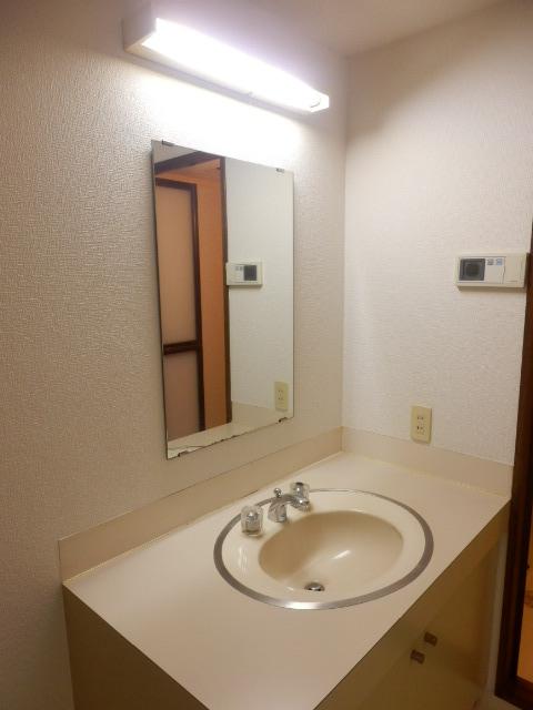CITY OASIS IMAMURA 201号室の洗面所