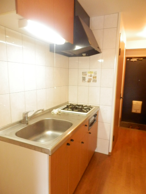 グランティグレ 101号室のキッチン