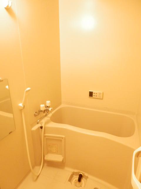 グランティグレ 101号室の風呂
