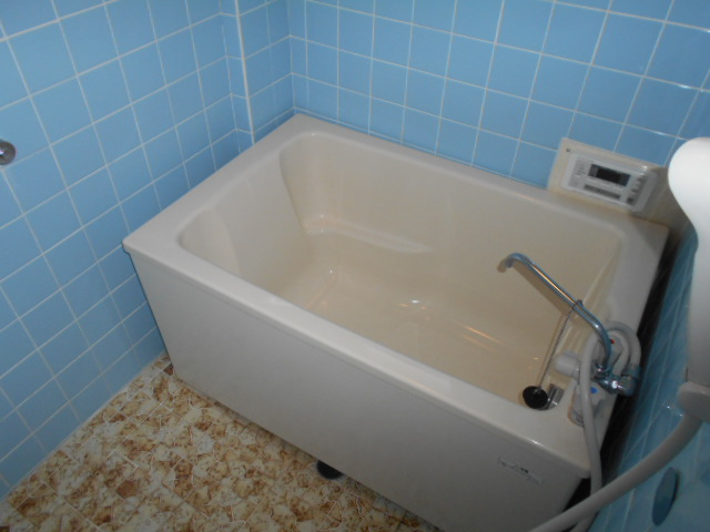 東ハイツA 103号室の風呂