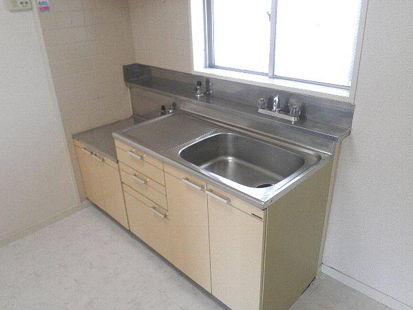 龍城ヶ丘ビル 202号室のキッチン