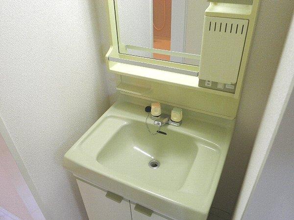 龍城ヶ丘ビル 202号室の洗面所