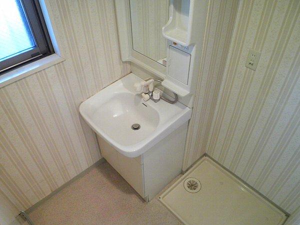 マインズビル 303号室の洗面所