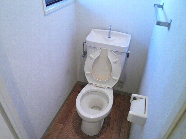 マインズビル 303号室のトイレ