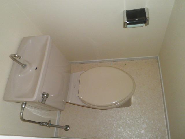 ウスイグリーンビル 401号室のトイレ